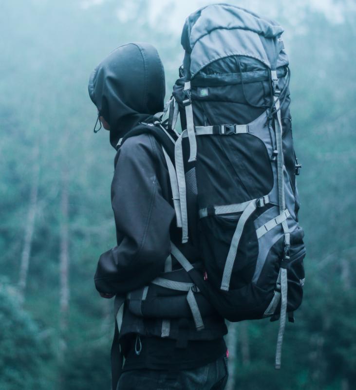 Bergtouren mit Hund und Wanderungen mit Hund. Tests für sichere Bergtouren mit Hund