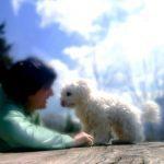 Danke für deine Unterstützung für Bergtouren mit Hund