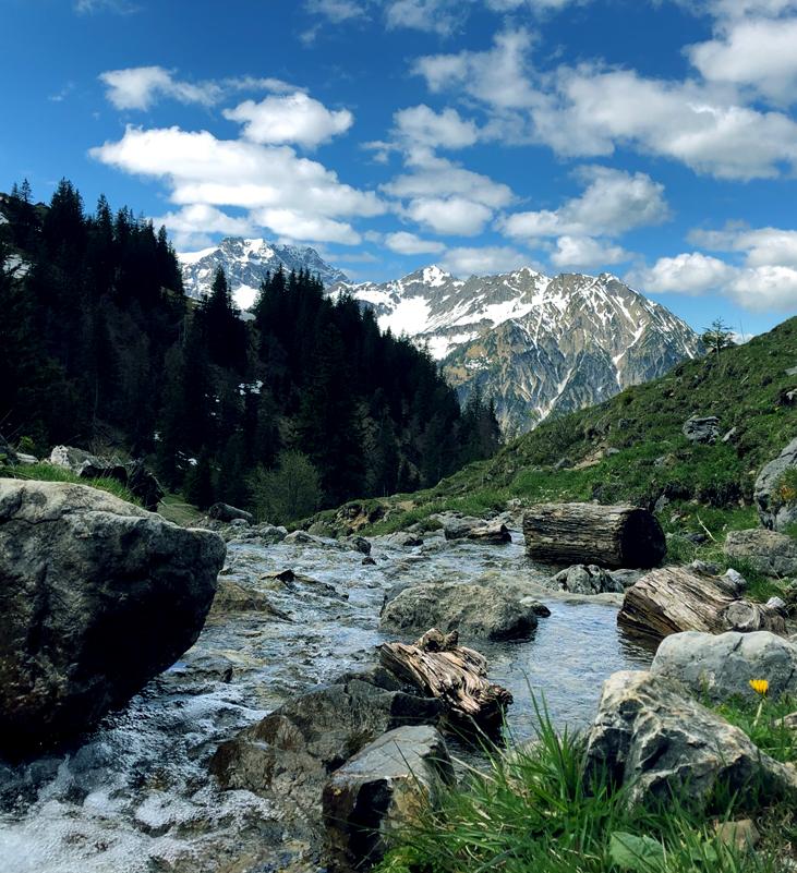 Wandern mit Hund und Bergtouren mit Hund im Allgäu